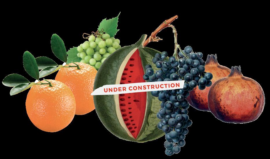 Colleroni Frutta