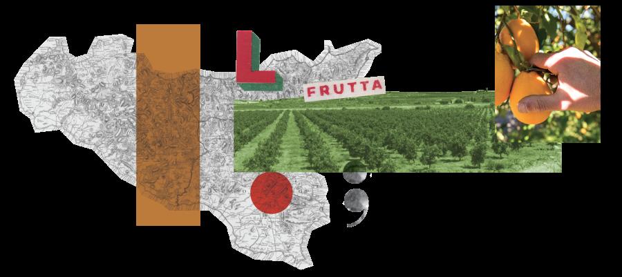 Distributore di Frutta in Sicilia
