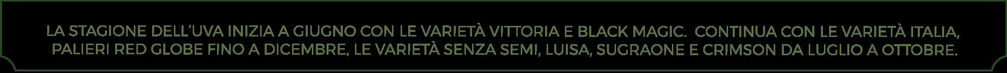 Uva in Sicilia