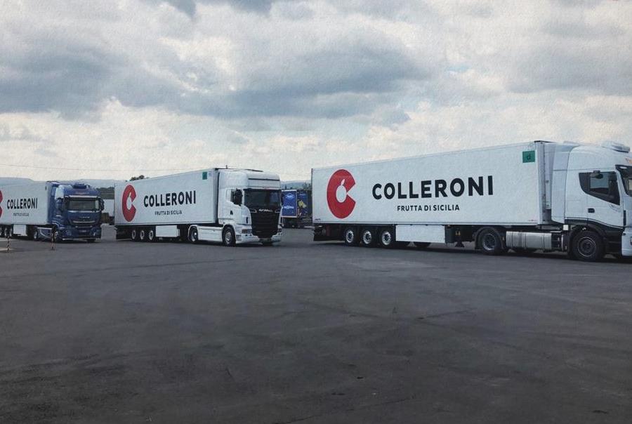 Logistica Colleroni